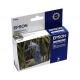 EPSON Light Cyan Inkjet Cartridge (T048540)